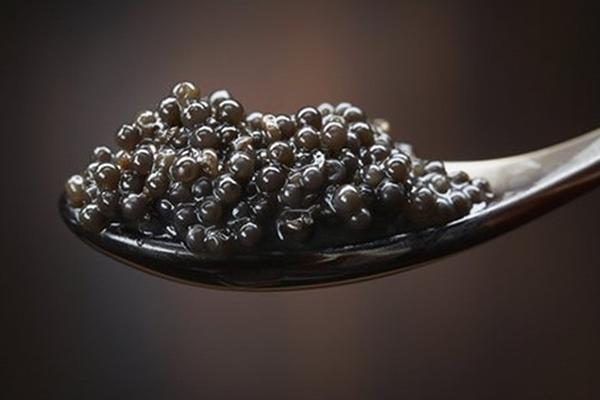 trứng cá caviar mua ở đâu   Món Miền Trung