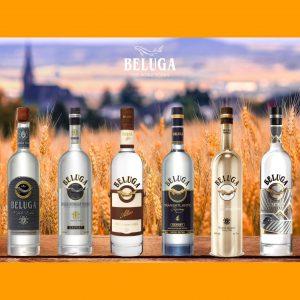 Địa chỉ bán rượu Vodka Beluga Nga chính hãng 100%