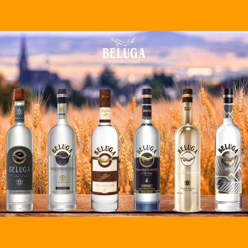 địa chỉ bán rượu vodka beluga chính hãng 100%